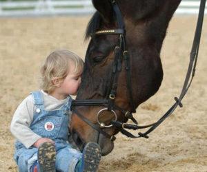 Ребёнок целует лошадь