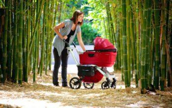 Когда можно гулять с новорожденным и сколько гулять?